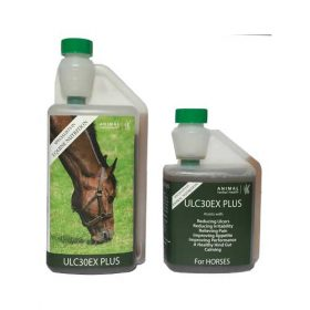 Reduce Equine Ulcers