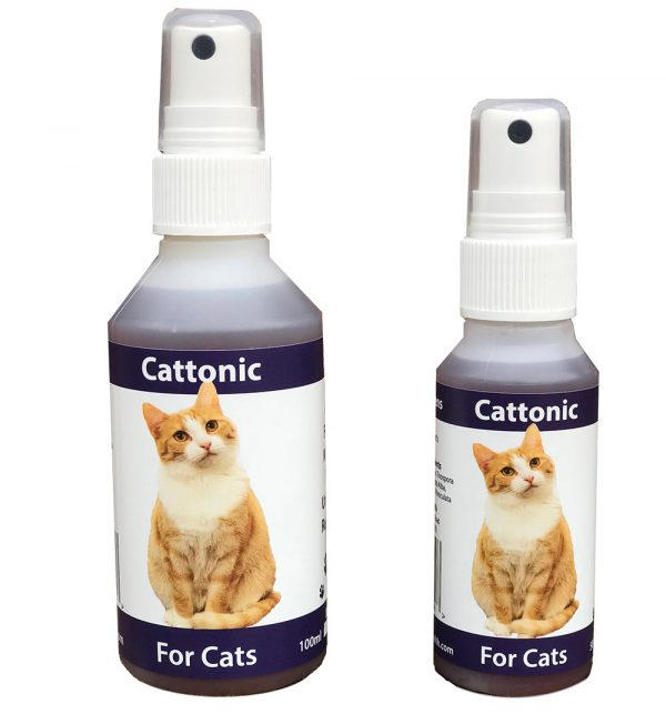 Herbal Supplement for Cats