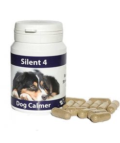 Relieve canine anxiety