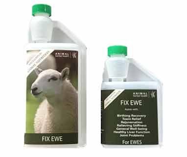 Herbal supplement for Ewes