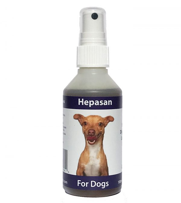Hepasan - Effective Liver Tonic for Dogs