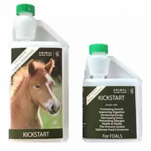Kickstart - Herbal supplement for foals