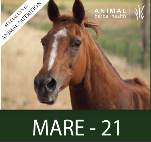 Mare 21 for Reculating the cycle in moody mares