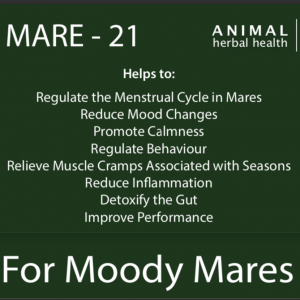 How to help Moody Mares