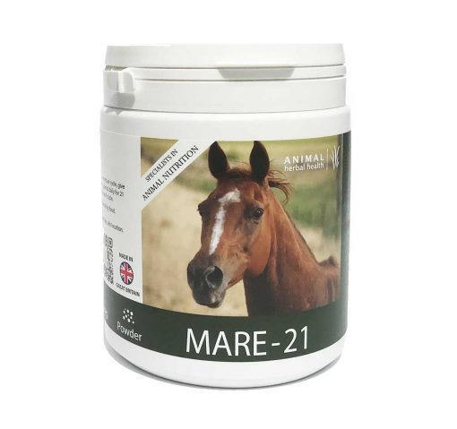 Regulating Menstrual Cycles in Mares