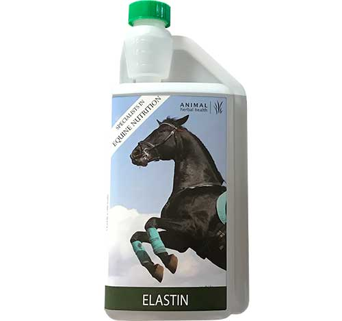 Elastin Joint Supplement