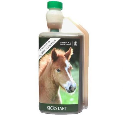 Herbal tonic for foals